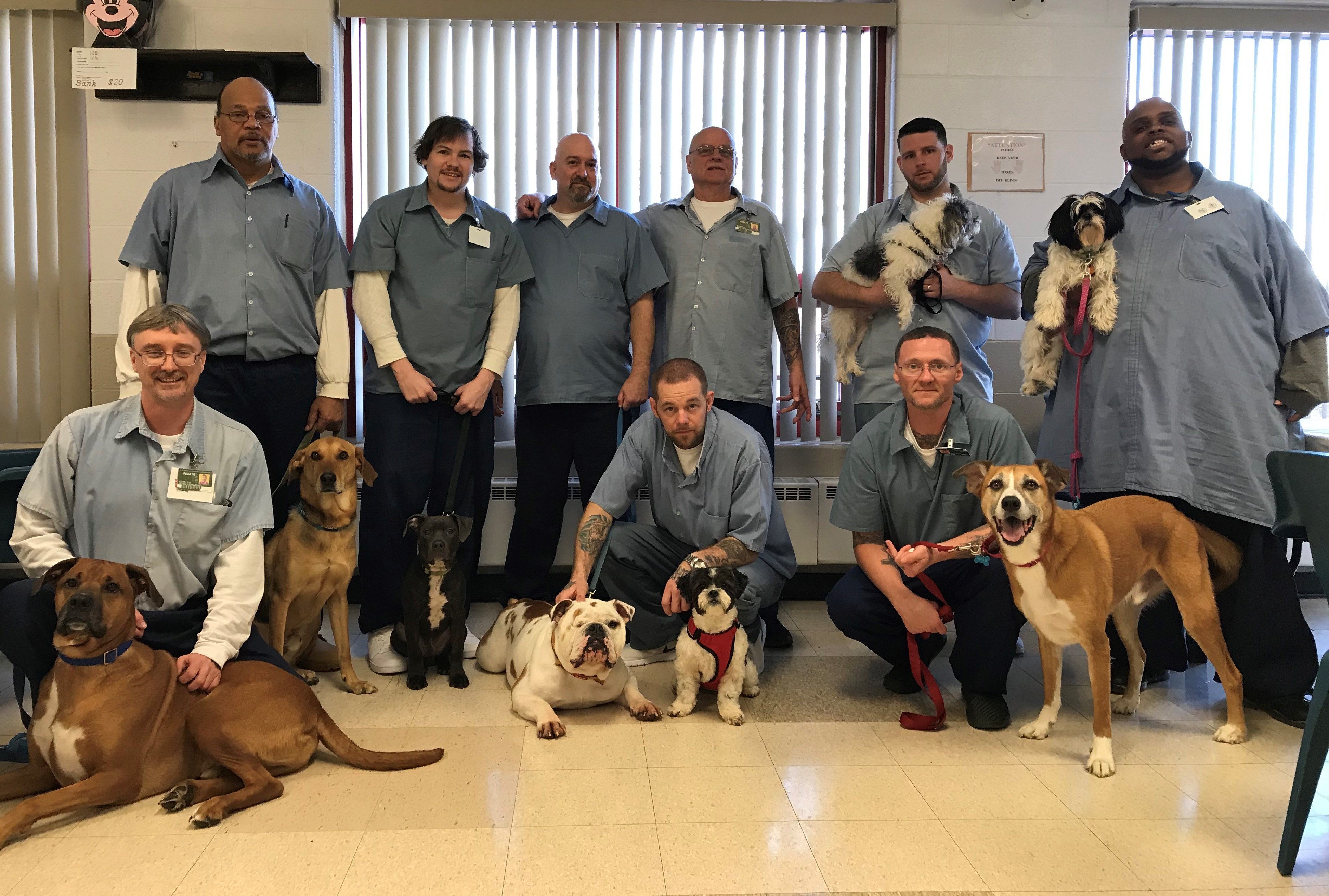Animal Trainers Honored at LorCI
